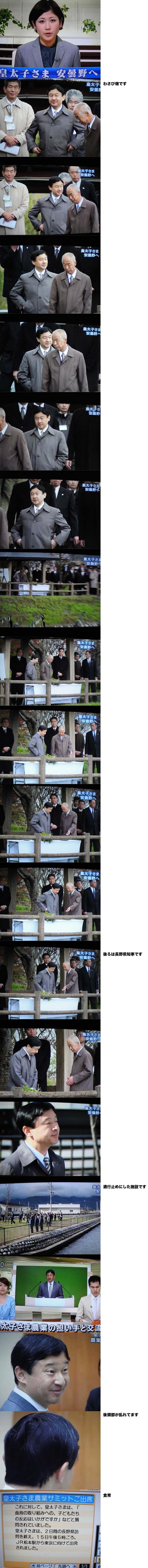 【お祝い】新天皇の即位を祝う一般参賀を5月4日に実施へ。宮内庁