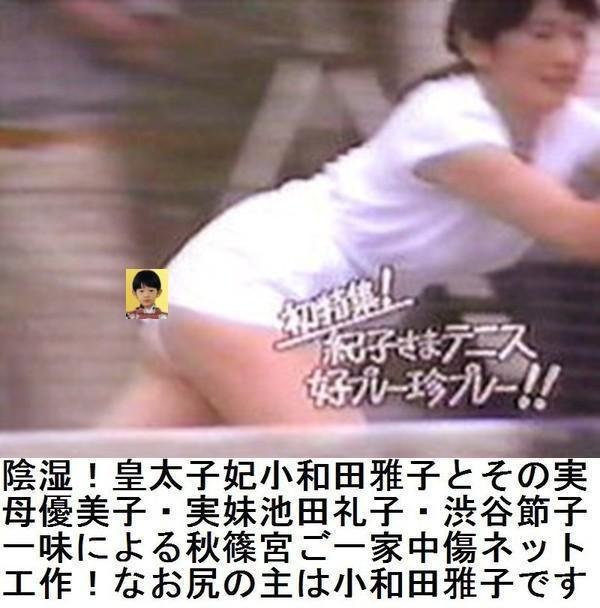【皇太子夫妻にまつわる怖い話】第二百九話YouTube動画>2本 ->画像>601枚