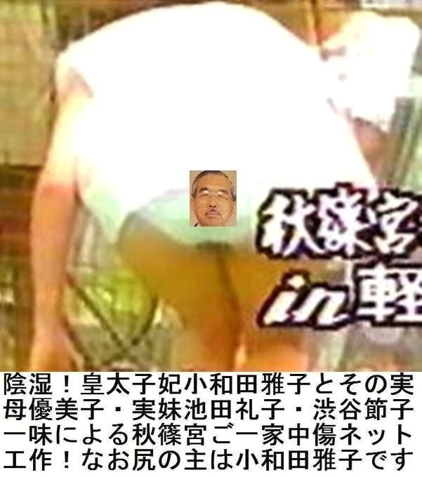 秋篠宮紀子さま伊勢神宮臨時祭主に立候補YouTube動画>8本 ->画像>283枚