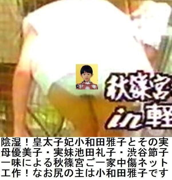 【皇太子夫妻にまつわる怖い話】第二百十話->画像>339枚